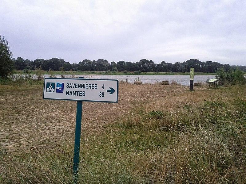 Paysage vers Savennières