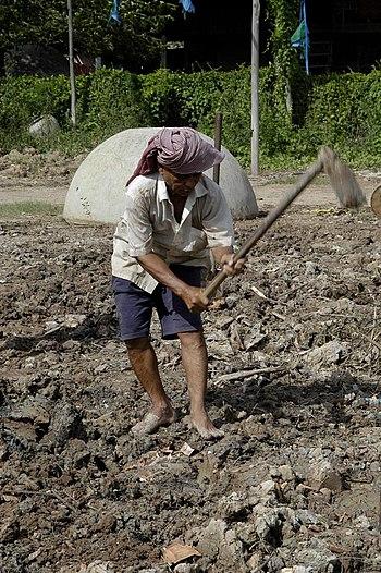 Peasant from Cambodia.