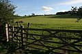 Permissive footpath to Roger's Plantation - geograph.org.uk - 269501.jpg
