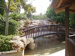 PikiWiki Israel 14965 Japanese garden in Holon