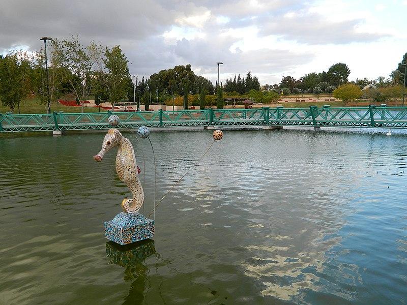 אגם בפארק רעננה