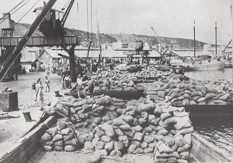 סחורות בנמל חיפה