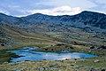 Pirin ezera IMG 0562, едно от Башлийските езера.jpg