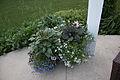 Planters IMG 0181.jpg