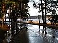 Pludi druvciema 2011 - panoramio (55).jpg