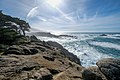 Point Lobos State Natural Reserve 1 18 19 (46813118221).jpg