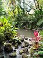 Polynesian Garden (7299424512).jpg