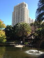 Pond in City Botanic Gardens, Brisbane 01.JPG