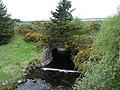 Pont yr Alwen - geograph.org.uk - 175953.jpg