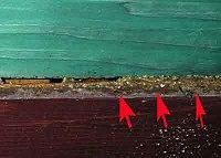 Popunjavanje pukotin propolisom.jpg