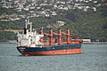 Port Wellington New Zealand-5529.jpg