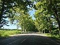 Poti 4400, Georgia - panoramio.jpg