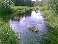 Prandi jõgi Veskiarus.jpg