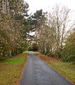 Private driveway to Greenhill Farm near Bishops Itchington - geograph.org.uk - 1548902.jpg