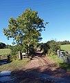 Private road - geograph.org.uk - 993492.jpg