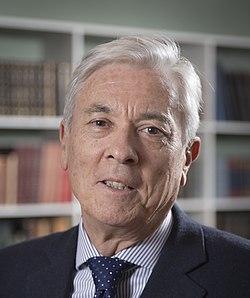 Professor Miguel Rubi (cropped).jpg