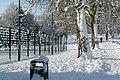 Prospect Park - geograph.org.uk - 1659531.jpg