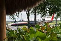 Punta Cana, Dominican Republic - panoramio (38).jpg