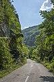 Put kroz kanjon Jerme.jpg