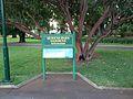 Queens Park, Toowoomba 02.JPG