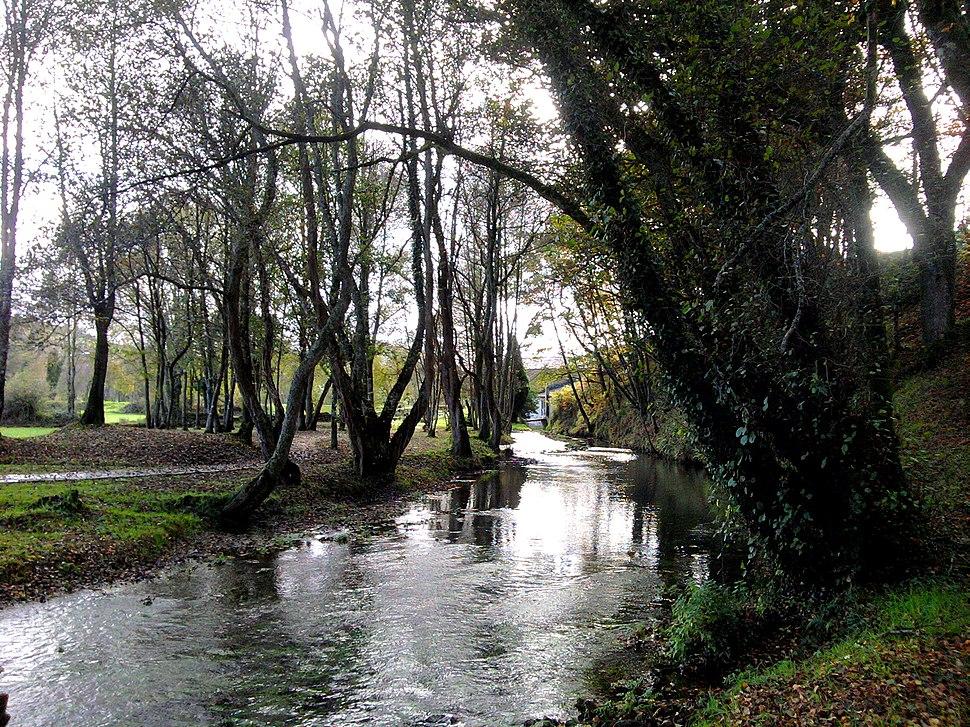 Río Miño en Fonmiñá, A Pastoriza
