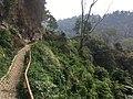 Rainbow Hill near Malang 1.jpg
