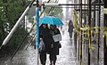 Rainy day of Tehran - 29 April 2018 06.jpg