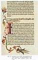 Rastatt historische bibliothek inkunabel 1.jpg