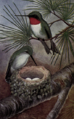 Reed-ruby-throated-hummingbird2.png