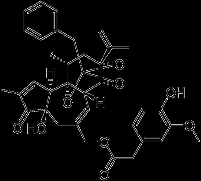 File:Resiniferatoxin skeletal.png