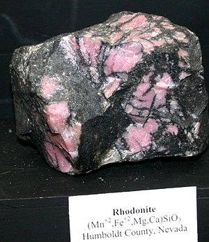 Rhodonite - Pink rhodonite contrasting with black manganese oxides is sometimes used as gemstone material as seen in this specimen from Humboldt County, Nevada.