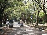 Rice University - Arboretum.JPG