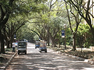 Residential colleges of Rice University