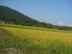 Gaindakot Municipality Wikipedia