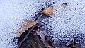 Ricketts Glen State Park winter hike 3 (43427909080).jpg