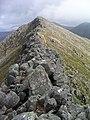 Ridge to Stob Coire Dheirg - geograph.org.uk - 246877.jpg