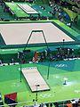 Rio 2016 Olympic artistic gymnastics qualification men (28517645324).jpg