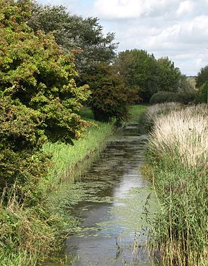 Senlac Hill - Image: River Asten, Nr. Sheepwash Bridge, Bulverhythe. (6147718653)