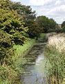 River Asten, Nr. Sheepwash Bridge, Bulverhythe. (6147718653).jpg
