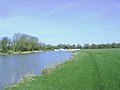 River Great Ouse, St Neots - geograph.org.uk - 684755.jpg