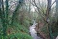River Len, Mote Park - geograph.org.uk - 1609986.jpg