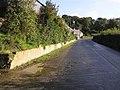 Road at Ardvarnock Glebe - geograph.org.uk - 998545.jpg