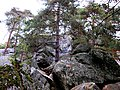 Rocher de Dame-Jouanne - panoramio.jpg