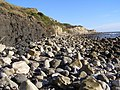 Rocky beach exposed at low tide, Ringstead Bay - geograph.org.uk - 266861.jpg