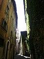 Roma - Via dei Coronari (6089276529).jpg
