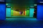 Rotterdam NAI.jpg
