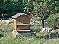 Roussas - ruche.jpg