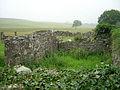 Ruin Near Challoch Burn - geograph.org.uk - 216328.jpg