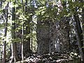 Ruine Thürndl.jpg