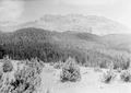 Rundblick auf der Alp Stavelchod vom Piz Tuorn bis zum Piz Nair - CH-BAR - 3239901.tif
